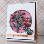 Dimensional Window Cards-Video