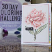 Day 30. No Line Coloring & Giveaway